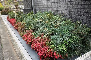 植栽管理・害虫駆除業務